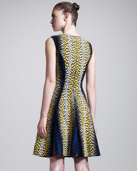 Shagreen-Intarsia Dress