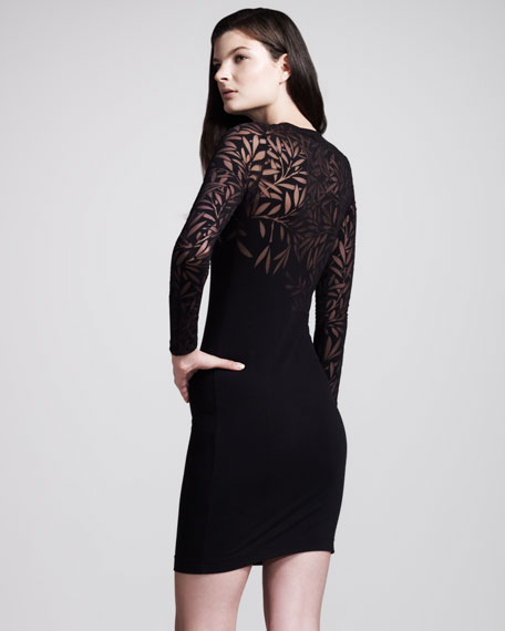 Devore Long-Sleeve Minidress
