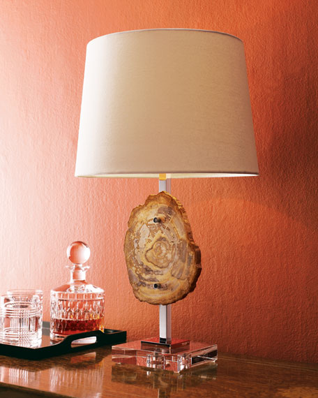 Petrified Wood Lamp