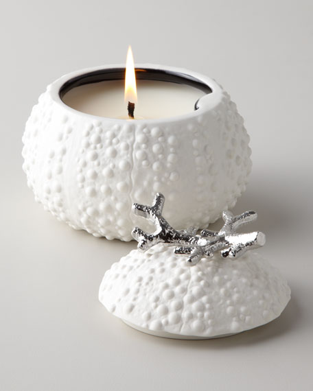 Sea Urchin Candle