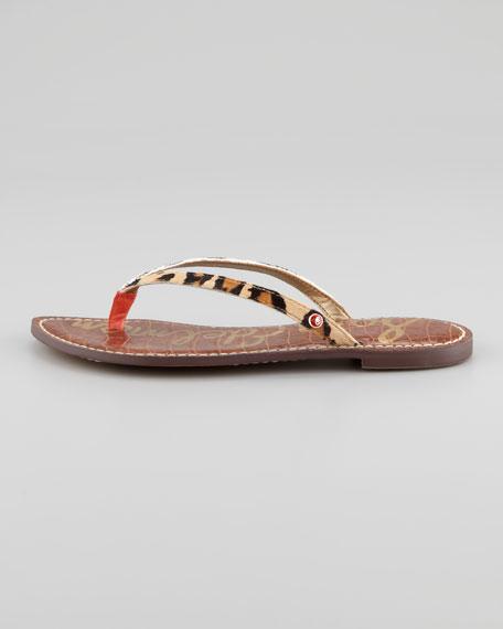 0bb841de158b Sam Edelman Gracie Animal-Print Calf Hair Thong Sandal