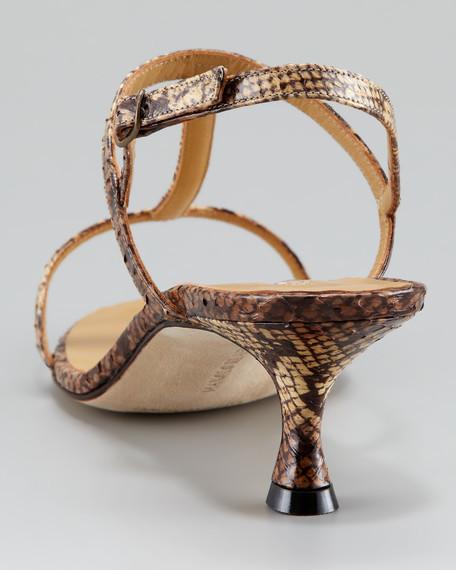 Gravito T-Strap Snakeskin Sandal