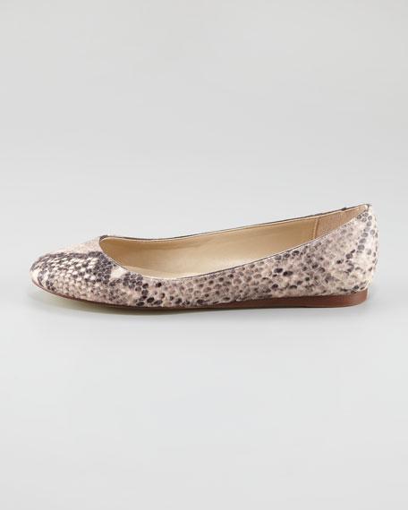 Python-Print Ballerina Flat
