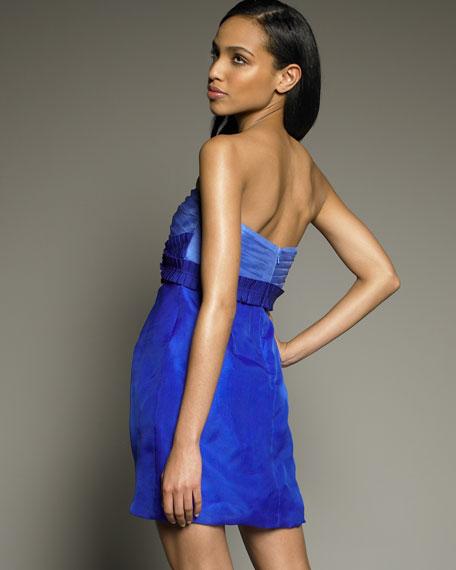 Ombre Organza Dress