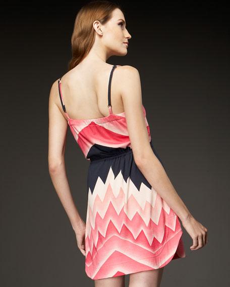 Alta Printed Jersey Dress