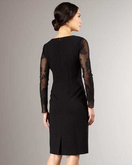 Reese Sheer-Sleeve Dress