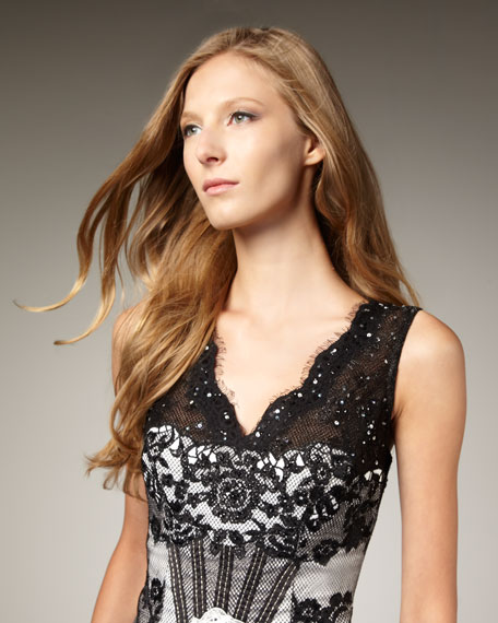 Lace Two-Tone Dress