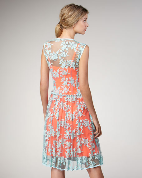 Varsity Two-Tone Lace Dress