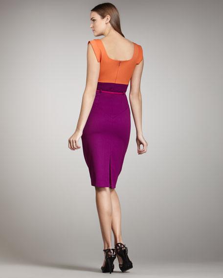 Jackie Two-Tone Sheath Dress