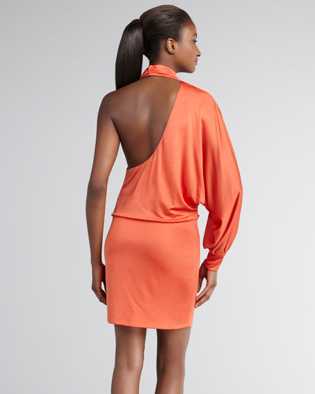 Niobe One-Sleeve Minidress