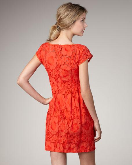 Vamos Lace Dress