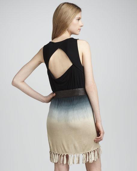 Dresdin Ombre Dress