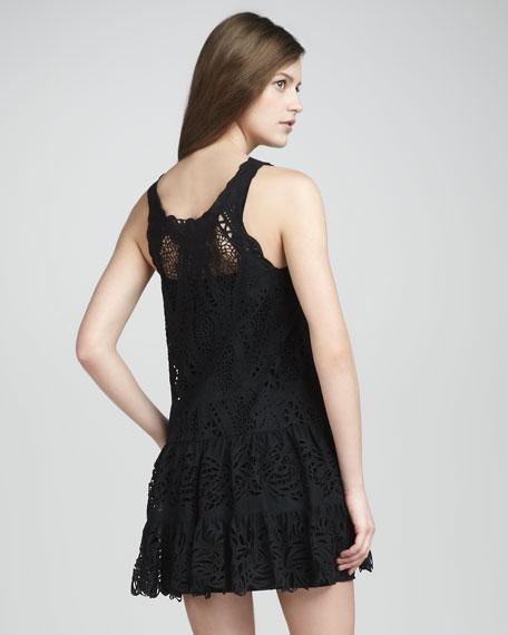 Lace Voile Dress