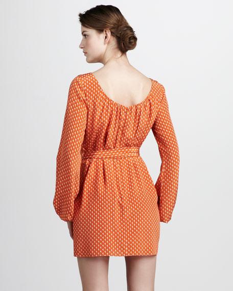 Hallie Long-Sleeve Dress