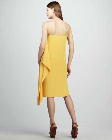 Strapless Silk Dress