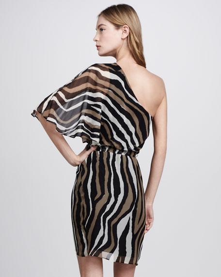 Tahiry Zebra-Print Dress