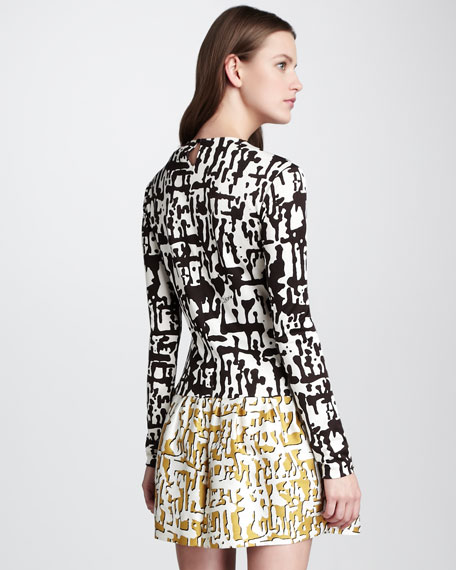Margaux Two-Tone Printed Dress