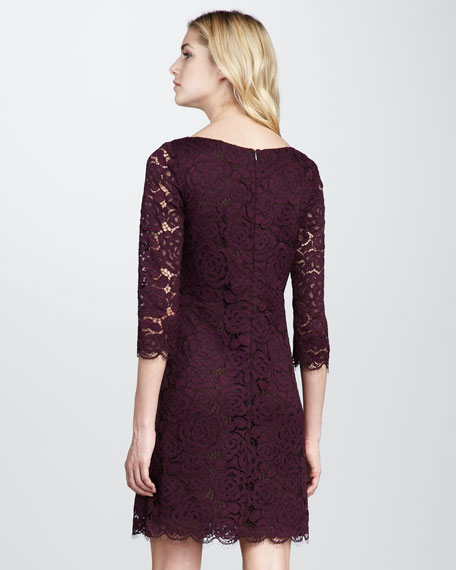 Geddes Fitted Lace Dress