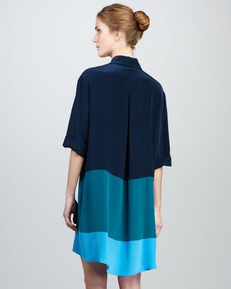 Colorblock Silk Shirtdress