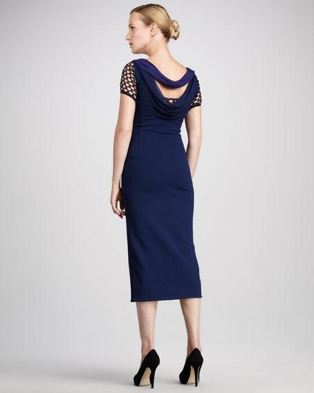 Sheena Net-Sleeve Dress