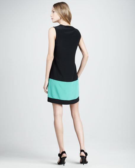 Caitlin Colorblock Shift Dress