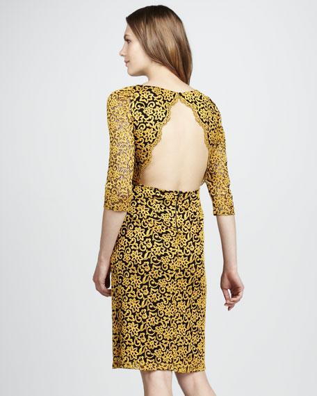 March Lace Dress
