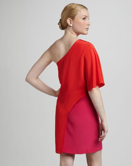 Two-Tone Overlay Dress