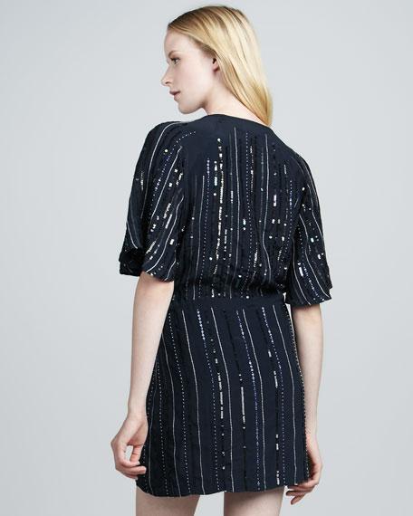 Blanca Sequined Dress