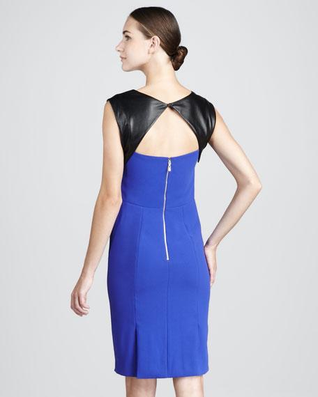 Leather-Back Dress