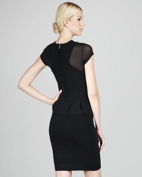 Dani Sheer-Panel Dress