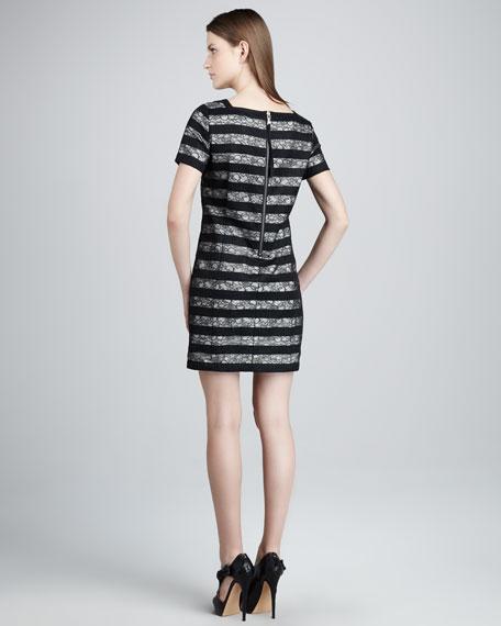 Lucienne Lace-Stripe Dress