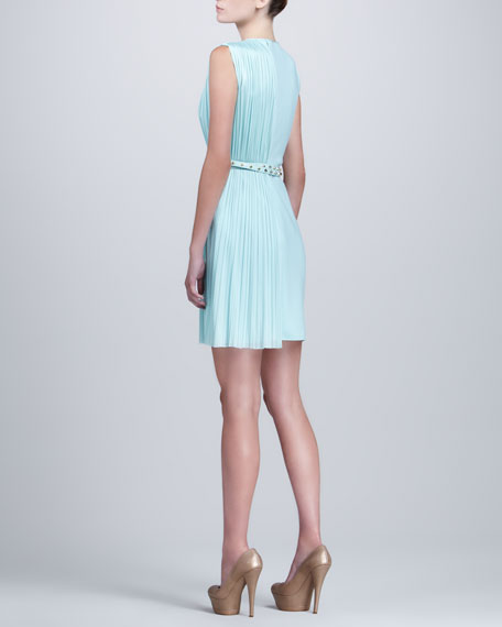 Belted Side-Pleat Dress