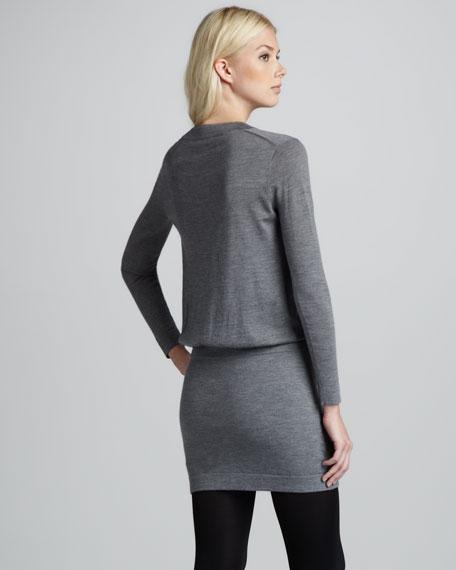 Lillina Long-Sleeve Dress