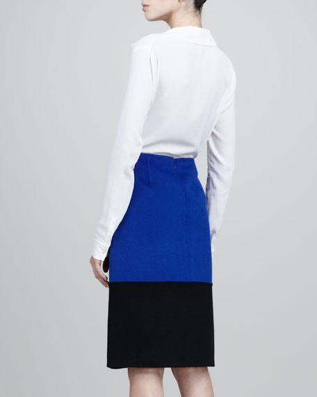 Colorblock A-Line Skirt