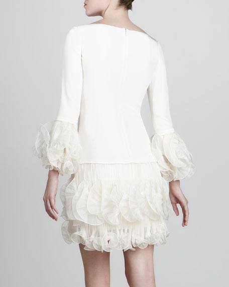 Ruffled-Chiffon Crepe Dress