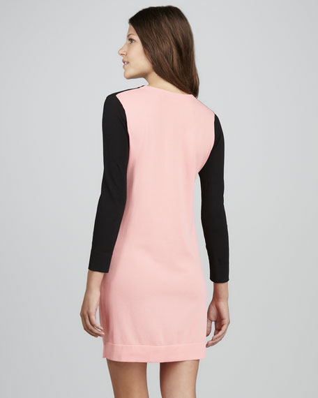 Aina Colorblock Knit Dress