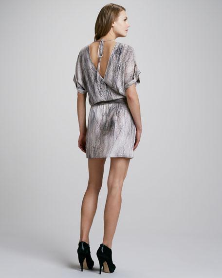 Printed Tie-Waist Dress