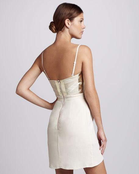 Somerset Paneled Dress