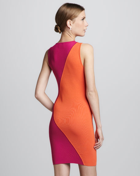 Two-Tone Fitted Dress