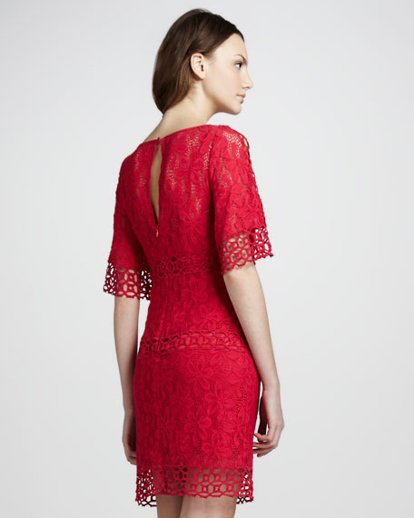 Lace Dress with Bell Sleeves