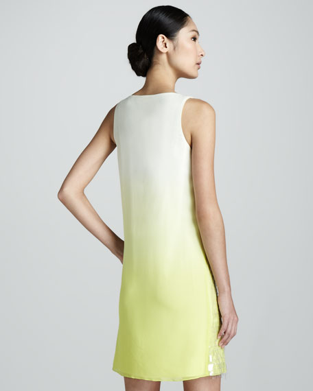 Shimmer Ombre-Sequin Tank Dress