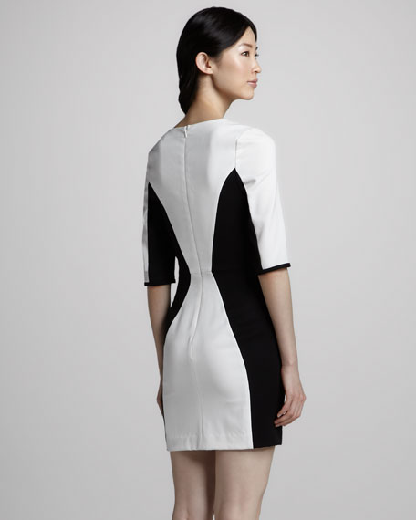 Terri Contour Colorblock Dress