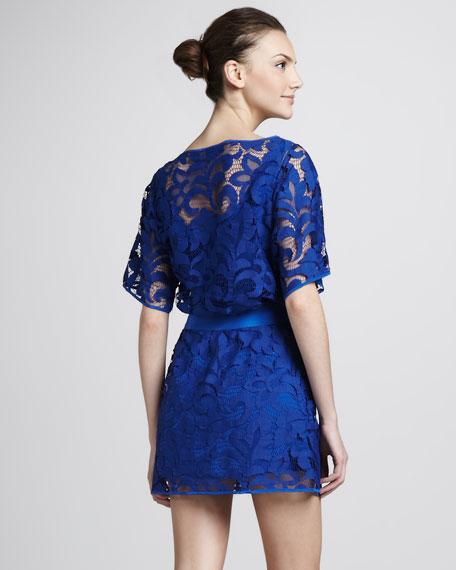 Drop-Waist Lace Dress with Bateau Neckline
