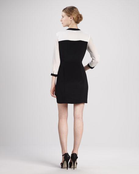 Colorblock Paneled Silk Dress