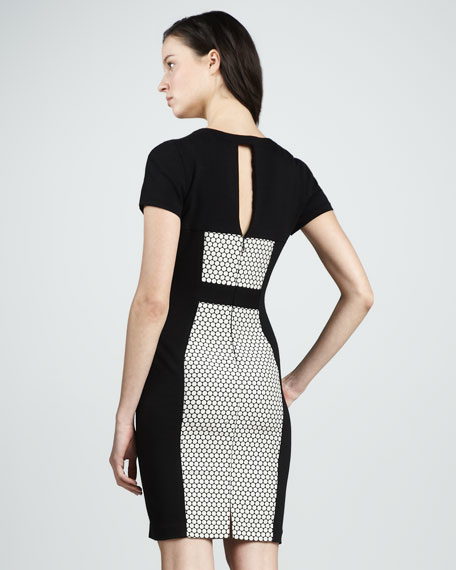 Short-Sleeve Panel Dress