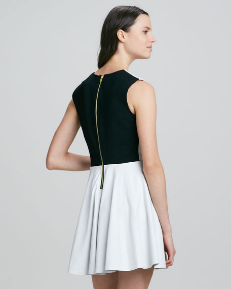 Jeannie Colorblock-Back Leather Dress