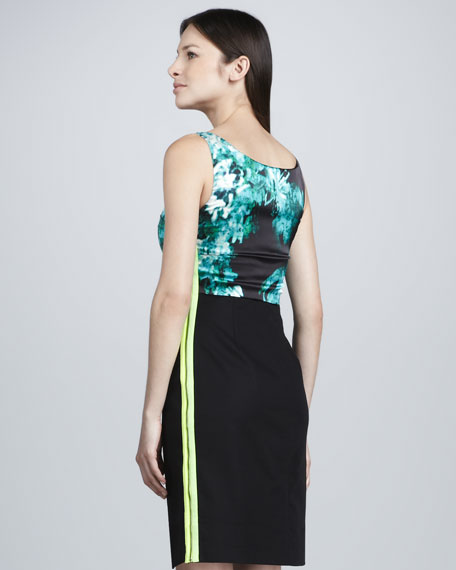 Hallie Bodice-Printed Dress