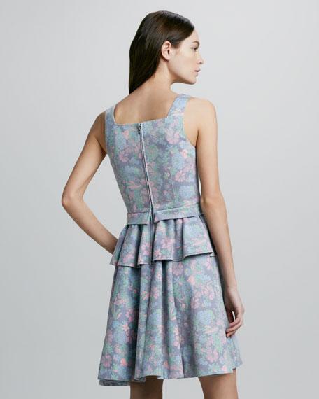 Drew Printed Denim Peplum Dress