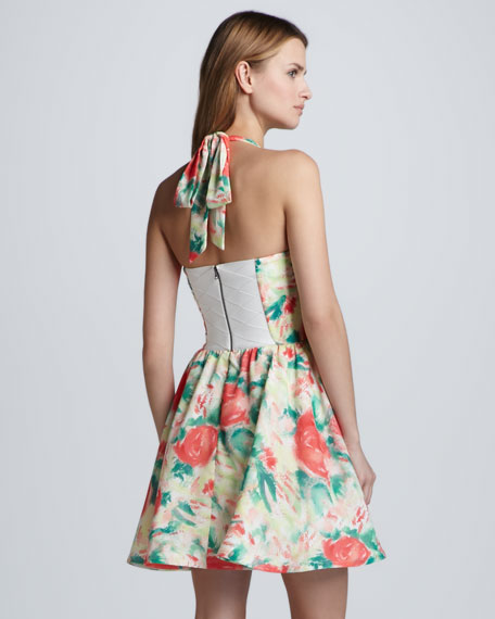 Fleur Printed Bustier Dress