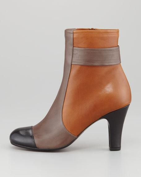 Quieja Colorblock Cap-Toe Ankle Boot